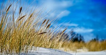 bornholm strand